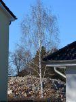 Reste der Betriebsberufsschule des VEB Geodäsie und Kartografie in Eichwalde
