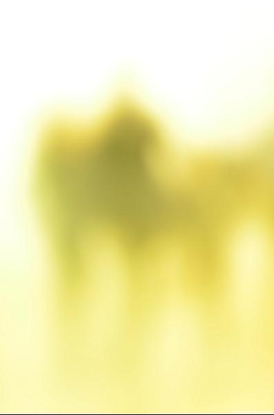 Gerhard Richter mit Gerhard Richter selbst gemacht