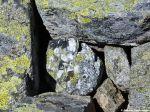 Steine in den Hohen Tauern