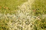 Herbst auf dem Fußballplatz