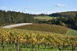Herbststimmung am Hammelburger Schlossberg