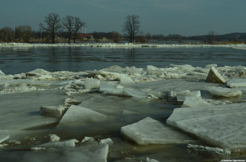 Die Oder beginnt in Frankfurt wieder zu fließen.