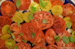Gartentomaten mit Basilikum
