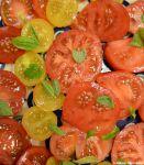 Vier Sorten Gartentomaten mit Basilikum
