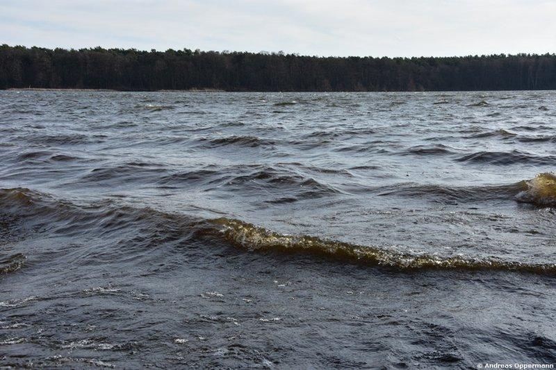 Wellen auf dem See