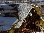 Winter am Krossinsee
