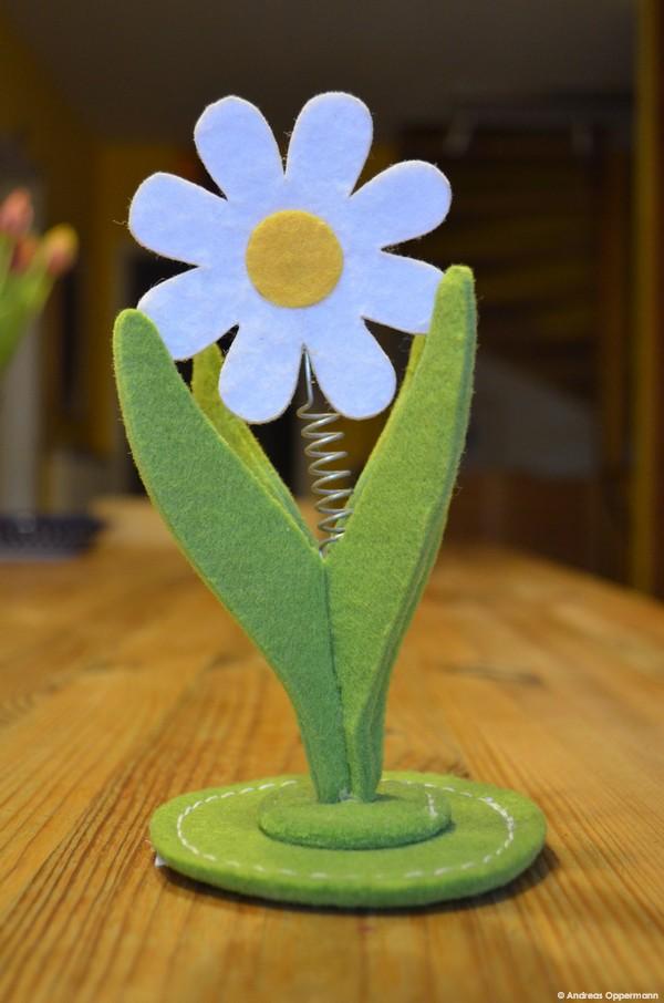 Filzblume aus Cottbus