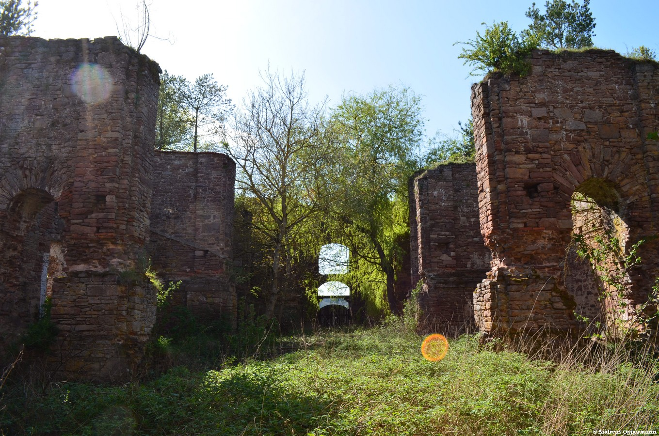 Ruine Aura Ende April 2012