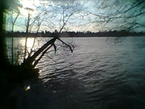 Am Zeuthener See am ersten richtig warmen Abend.