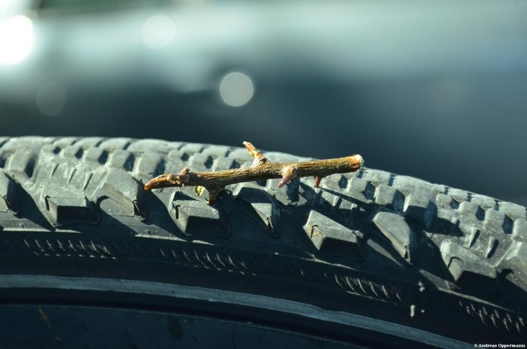 Dornen im Fahrradreifen