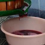 Der Saft tropft aus der Weinpresse