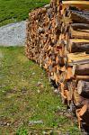 Holz am Dachstein