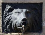 Löwe als Wasserspender
