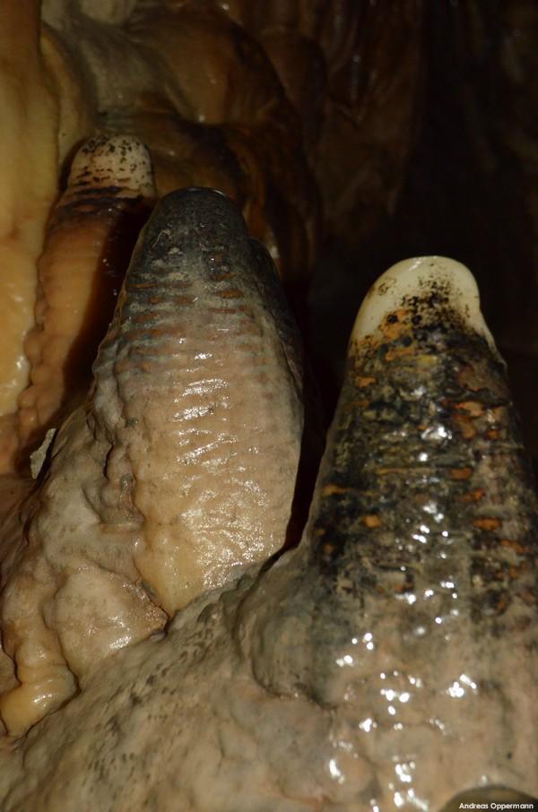 In der Tropfsteinhöhle Pottenstein