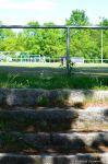 Tennis Borussia Berlin: Hans-Rosenthal-Sportanlage