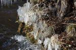 Winter Mitte März am Krossinsee